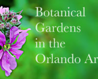 Botanical Gardens in Orlando