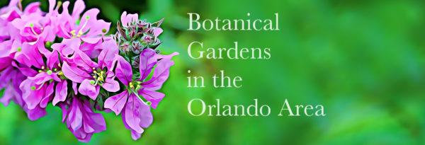 Botanical Gardens in Orlando